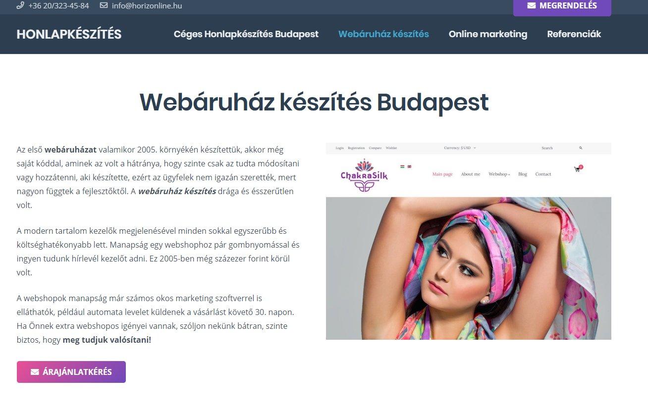 Profi webáruház készítés